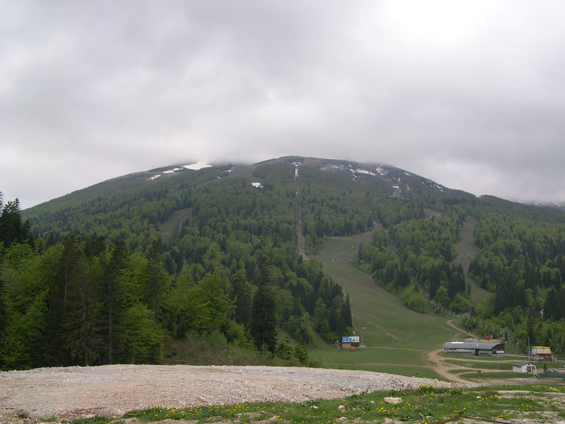 Ski slopes in summer.  (Site of 1984 Winter Olympics.)