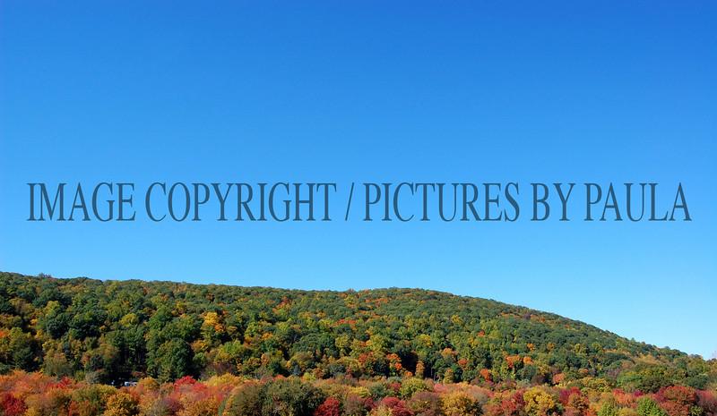PHOTO 9 - 715