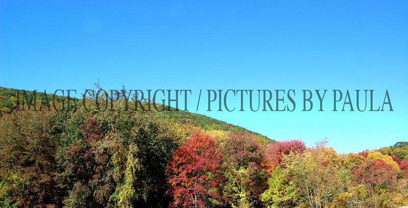 PHOTO 31 - 658
