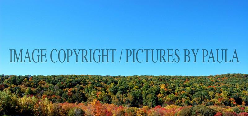 PHOTO 11 - 697