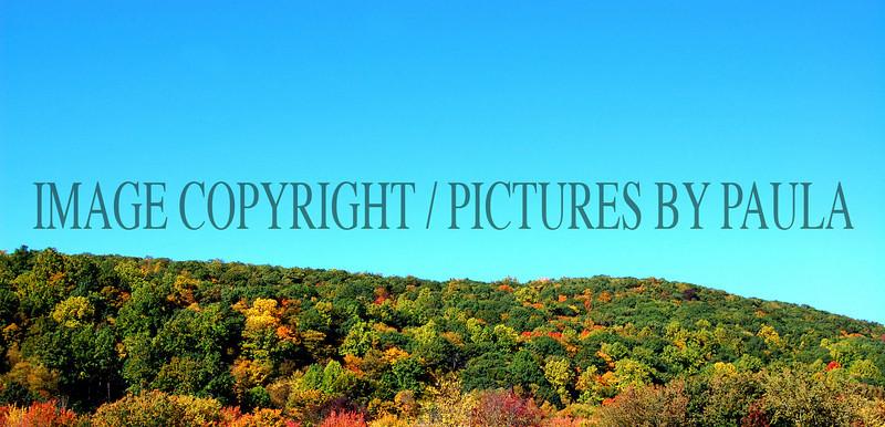 PHOTO 45 - 063