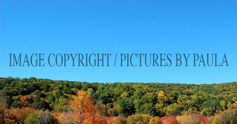 PHOTO 19 - 674