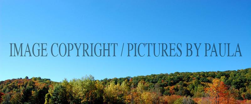 PHOTO 20 - 675