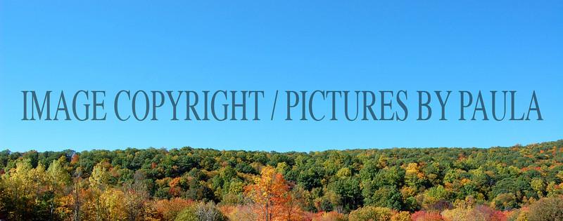 PHOTO 21 - 673