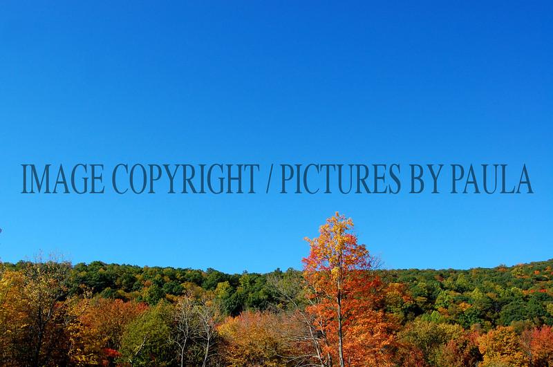 PHOTO 23 - 671