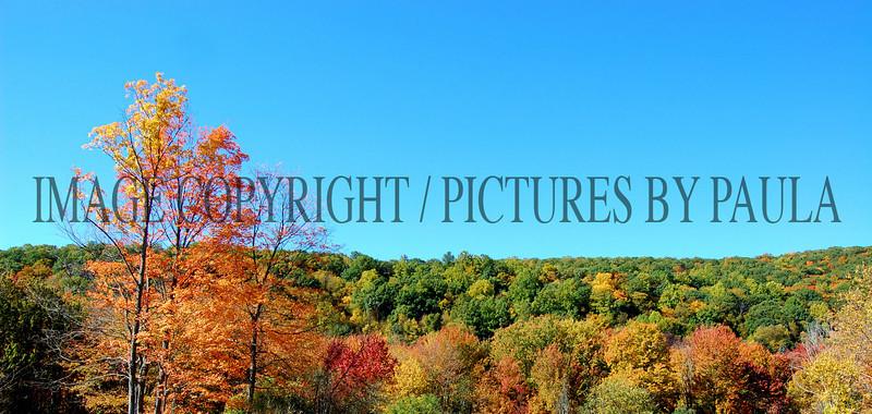 PHOTO 18 - 682
