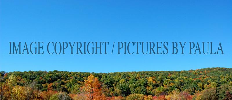 PHOTO 22 - 672