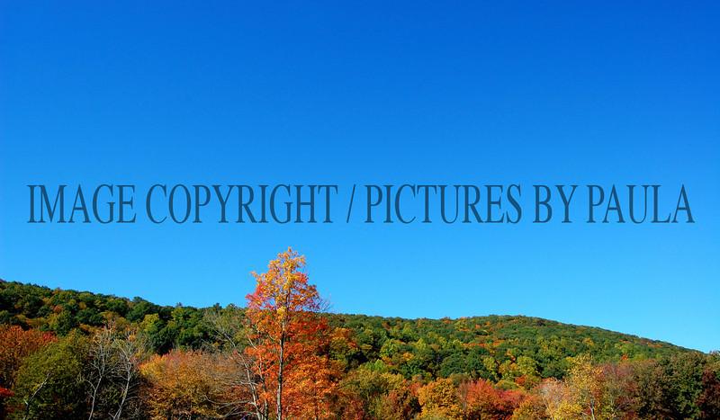 PHOTO 24 - 670