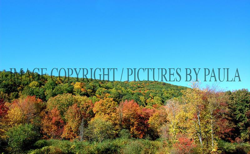 PHOTO 17 - 685