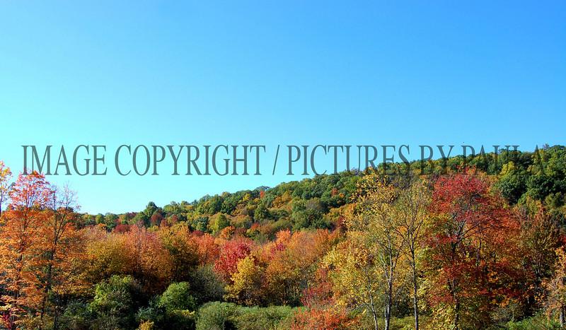 PHOTO 35 - 653