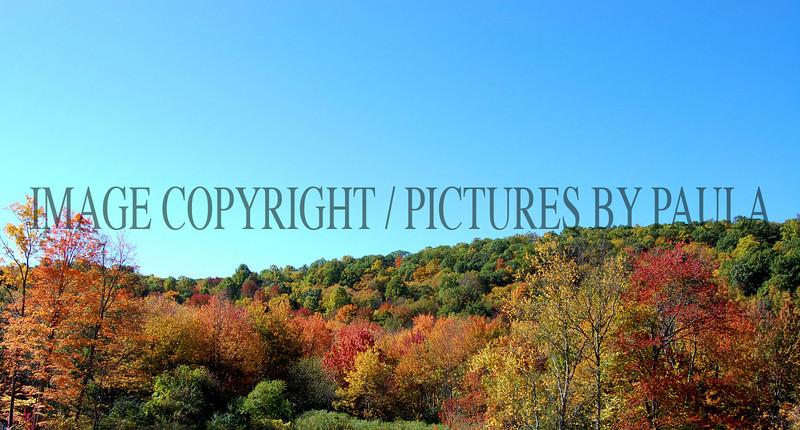 PHOTO 27 - 660