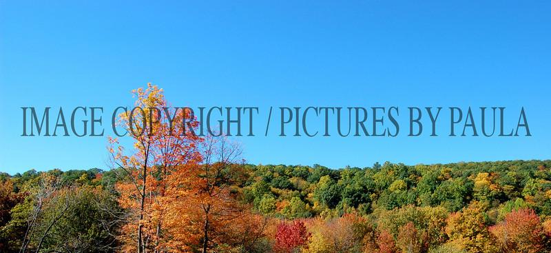 PHOTO 30 - 663