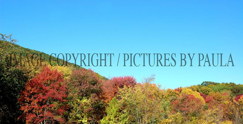 PHOTO 37 - 651