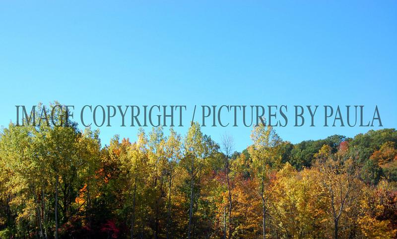 PHOTO 44 - 643