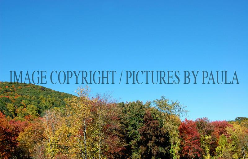 PHOTO 16 - 686