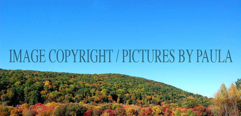 PHOTO 2 -714