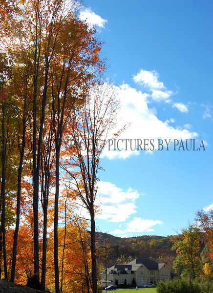PHOTO 57 - 0118