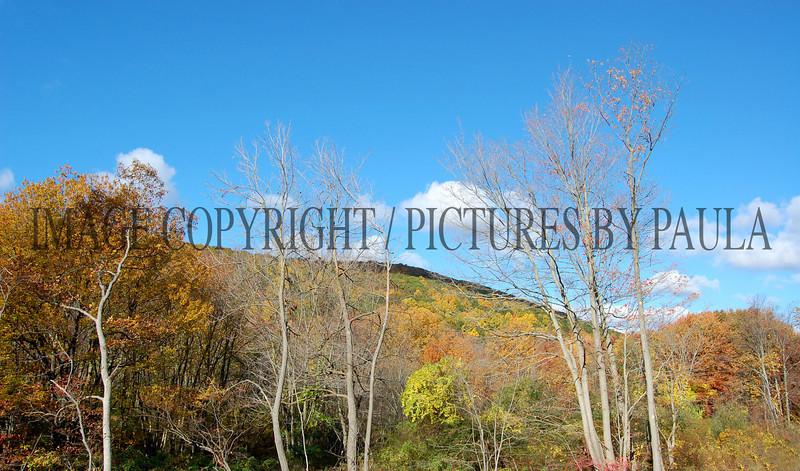 PHOTO 6 - 0005