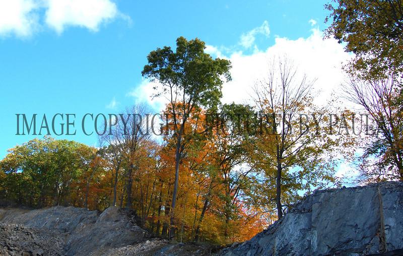 PHOTO 77 - 0121