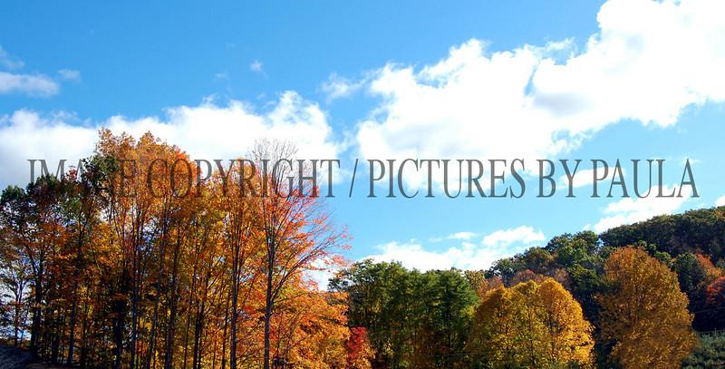 PHOTO 68 - 0149