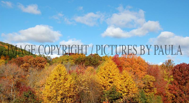 PHOTO 18 - 0026