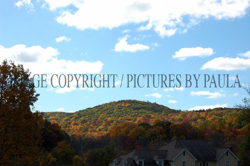 PHOTO 49 - 0101