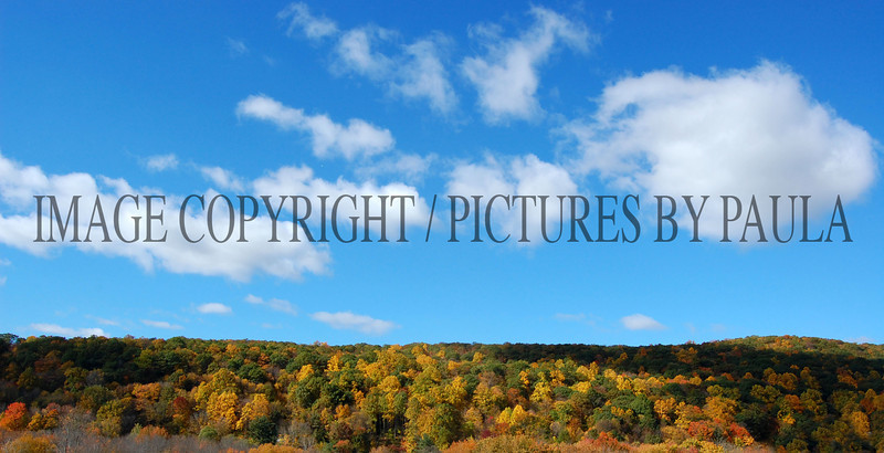 PHOTO 39 - 0073