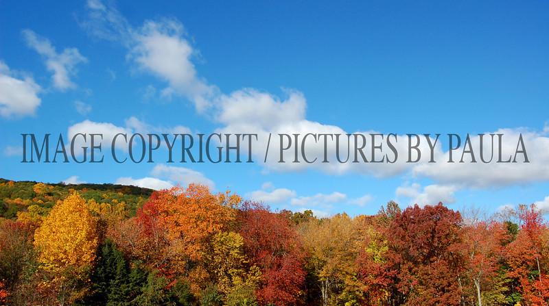PHOTO 28 - 0038