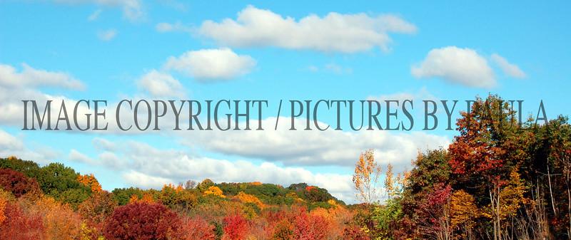PHOTO 61 - 0132