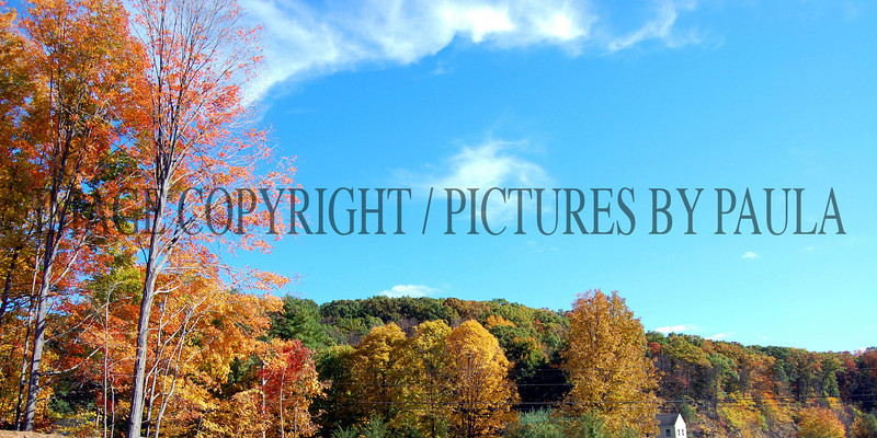 PHOTO 92 - 0225