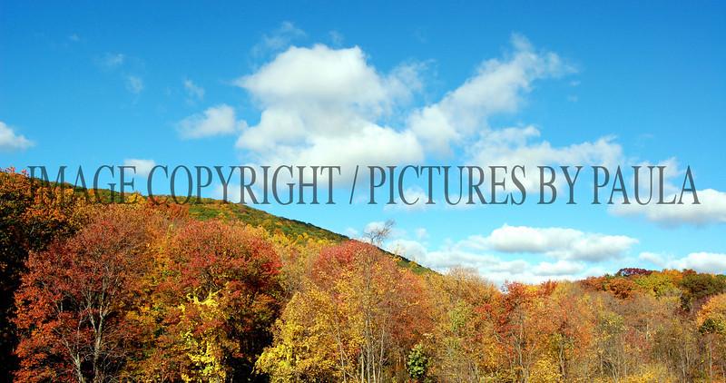 PHOTO 15 - 0020