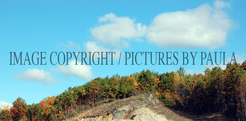PHOTO 78 - 0157