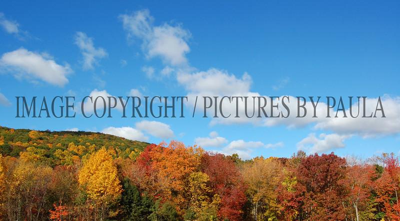 PHOTO 25 - 0035