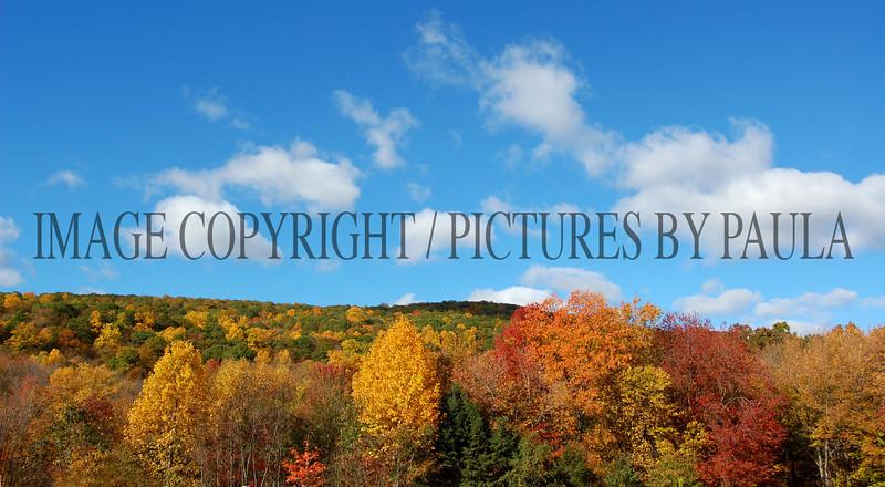 PHOTO 27 - 0037