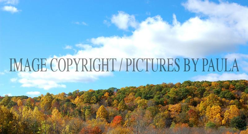 PHOTO 33 - 0056