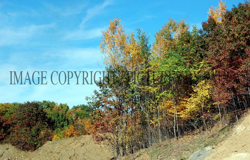 PHOTO 90 - 0213