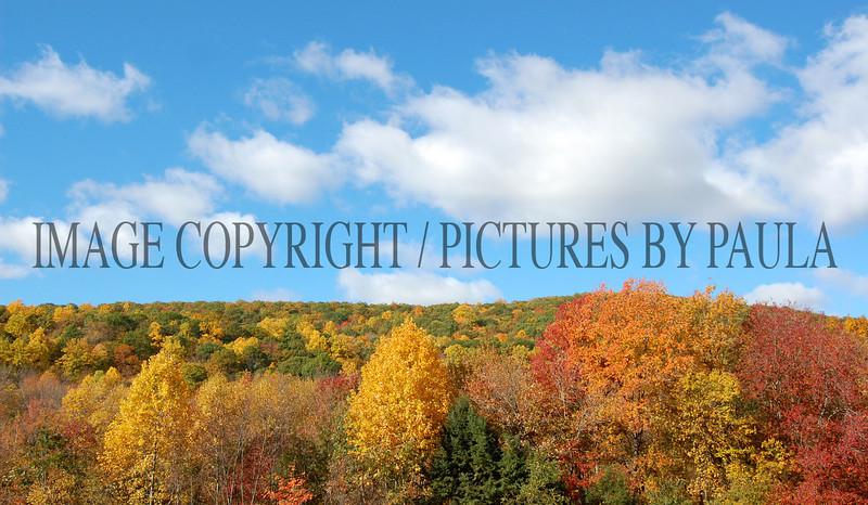 PHOTO 29 - 0039