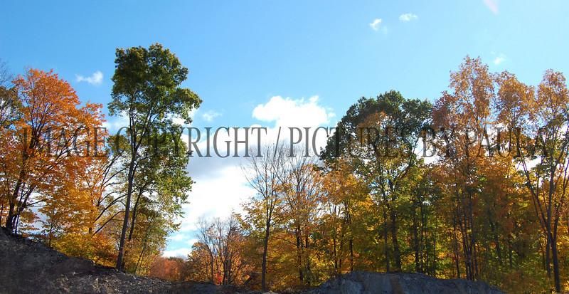 PHOTO 73 - 0097