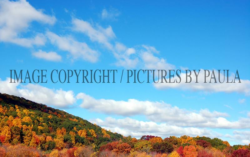 PHOTO 60 - 0131