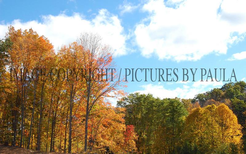 PHOTO 69 - 0150
