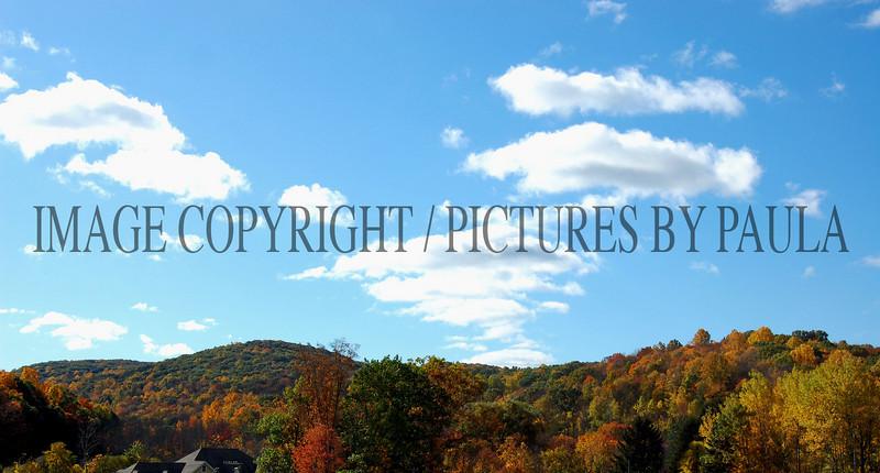 PHOTO 31 - 0054