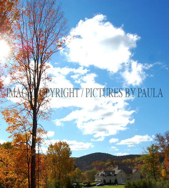 PHOTO 51 - 0105