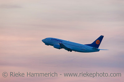 Düsseldorf, Germany - September 25, 2011: Lufthansa Boeing 737-300 Pforzheim climb flight over International Airport in Düsseldorf at dusk. This aircraft is a short- to medium-range narrow-body jet airliner and the best-selling jet airliner in the history of aviation.