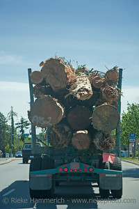 Truck in Motion carrying a Load of Logs - Vancouver Island, British Columbia, Canada