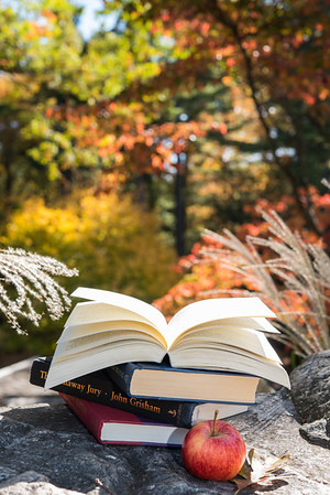 New England Fall Cover Photos for Newport Beach Public Library Foundation