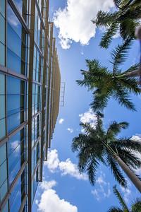 UM Medical Campus -133