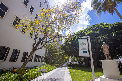 UM Medical Campus -143