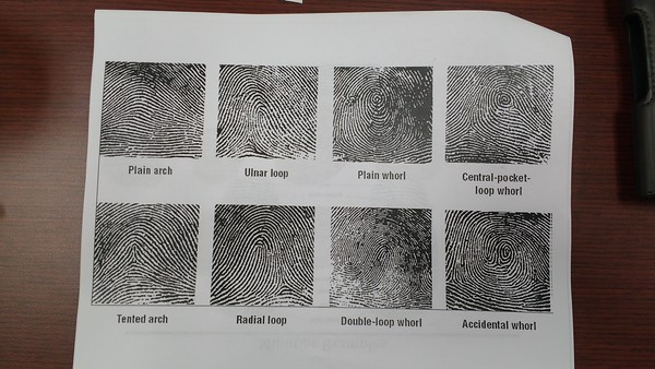 What type of finger print would you leave?