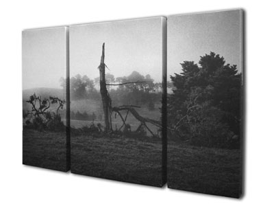 canvas print black and white triptych