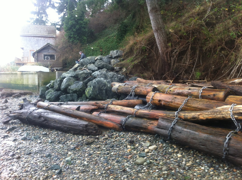 The Cleary project, two seasons after installation. The unique thing about this project is the anchoring system.<br /> Sound Slope & Shoreline, inc developed and manufactures an HDPE wave diffuser / log anchor which acts as the core of the drift log installation.